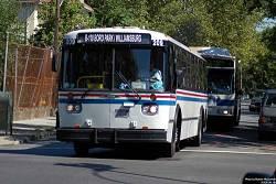 Noticias Criminología. Judios obligan a mujeres a sentarse atrás en bus urbano 110 de Nueva York. Marisol Collazos Soto
