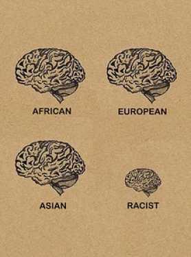 Noticias criminología. Comparación cerebros. Marisol Collazos Soto