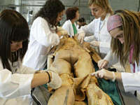 Noticias Criminología. Mitos y verdades sobre cadáveres en facultades de medicina. Marisol  Collazos Soto