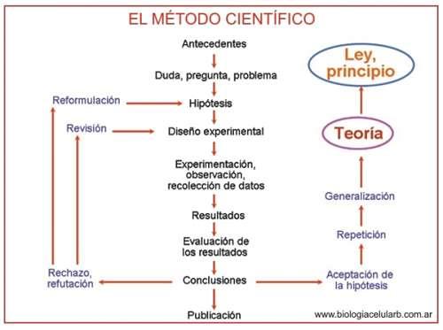 Noticias Criminología. Diagrama del método científico. Marisol Collazos Soto