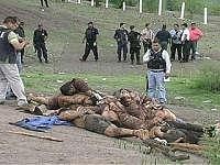 Noticias Criminología. Narcotráfico en México mata  periodistas. Marisol Collazos Soto