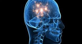 Noticias criminología. Teorías neurológicas populares refutadas el siglo pasado. Marisol Collazos Soto