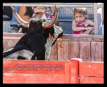 Noticias criminología. Toros y niños. Marisol Collazos Soto