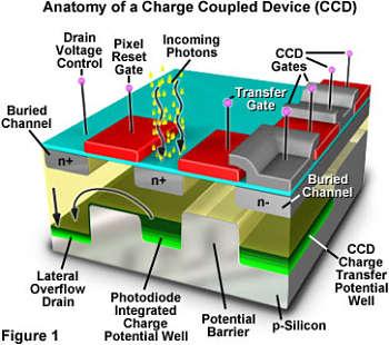 Actualidad Informática. Se publica en Nature el diseño de una cámara fotográfica con 28 gigapíxeles. Rafael Barzanallana