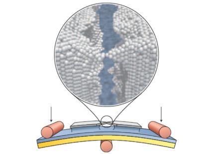 Actualidad Informática. Interruptor atómico basado en el control de la posición de un solo átomo. Rafael Barzanallana. UMU