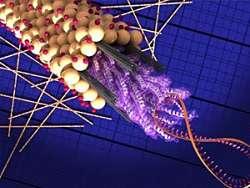 Actualidad Informática. Científicos de Berkeley Lab generan electricidad a partir de  virus. Rafael Barzanallana