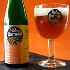 Toca Comer. Cerveza de endivia. Bélgica. Marisol Collazos Soto